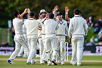 The Black Caps celebrates the wicket of Mark Stoneman of England during Day 3 of the Second International Cricket Test match, New Zealand V England, Hagley Oval, Christchurch, New Zealand, 1st April 2018.Copyright photo: John Davidson / www.photosport.nz