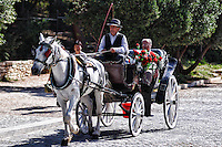 Horse and Wagon ride for tourists in Athens, Greece
