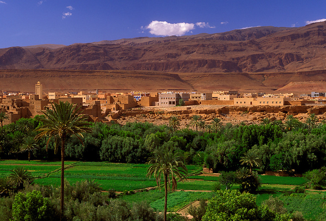 Oasis and town of Tinerhir, Morocco, Africa