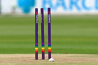 Rainbow hoops on the stumps during Essex Eagles vs Middlesex, NatWest T20 Blast Cricket at The Cloudfm County Ground on 11th August 2017