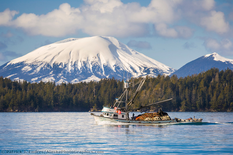 Commercial fishing boat passes by Mount Edgecumbe, Sitka Sound, southeast, Alaska