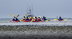 USA, California, Monterey,  Elkhorn Slough, kayakers