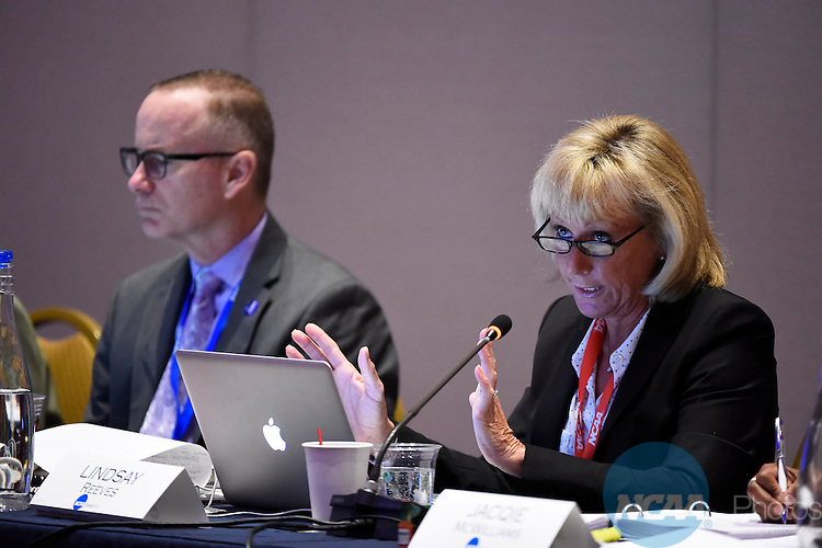 14 JAN 2015:  The Division II Management Council takes place at the 2015 NCAA Convention held at the Gaylord National Resort and Convention Center in National Harbor, MD.  Jamie Schwaberow/NCAA Photos  (Pictured:  Lindsay Reeves)
