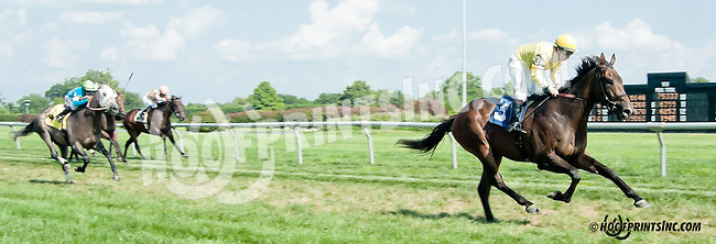 Thinkinquality winning at Delaware Park on 8/21/13