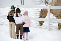 Young group of children admire a friendly horse in winter at the Minnesota Zoo.