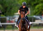 LOUISVILLE, KENTUCKY - MAY 01: Positive Spirit prepares for the Kentucky Oaks  at Churchill Downs in Louisville, Kentucky on May 01, 2019. Evers/Eclipse Sportswire/CSM