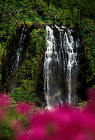 Kauai's Opaekaa Falls with out-of-focus flowers in the image's foreground