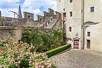 France, Indre-et-Loire, Langeais, château et jardin de langeais, porte de tourelle et rosier 'Théo evethau, premier plan rosiers à fleur d'oeillet (Rosa 'Grootendorst')