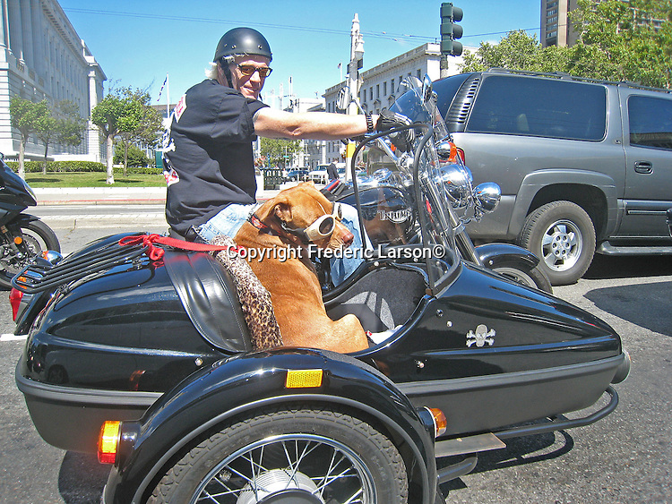 In an easy writer with sunglasses and goggles takes a ride in a sidecar of a motorcycle seen at a stop light intersection in San Francisco, California.