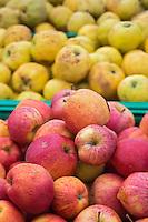 France, Calvados (14), Côte Fleurie, Trouville-sur-Mer,  pommes sur un étal du marché/ France, Calvados, Côte Fleurie, Trouville sur Mer,  apples on a market stall
