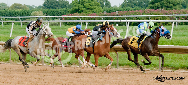 Annswer To Prayer winning at Delaware Park on 8/26/2013