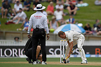 1st December 2019, Hamilton, New Zealand;  Neil Wagner takes to the pitch with a sledgehammer assisted by the groundskeeper. International test match cricket, New Zealand versus England at Seddon Park, Hamilton, New Zealand. Sunday 1 December 2019.