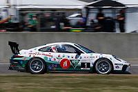 #1 Kelly-Moss Road and Race, Porsche 991 / 2017, GT3P: Roman De Angelis