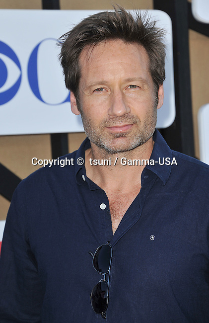 David Duchovny  arriving at the CBS tca 2013 at the Beverly Hilton In Los Angeles.