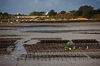 Europe/France/Bretagne/29/Finistère/L'Aber-Wrach:Travaux sur les  Parc ostréicoles