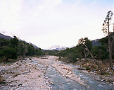 ARGENTINA, Patagonia, river at Nahuel Huapi National Park