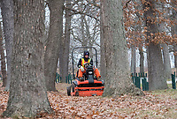 Robert Claeys, a seasonal worker for Sarnia's Parks and Recreation Department works his way through the oak trees of Canatara Park. For years the city removed the leaves for composting, but now the leaves are mulched and left on the ground to decompose. Lead hand Shawn Keck said said leaves are either blown into the brush of mulched and left on the ground to decompose and fertilize the trees. <br /> He said the city recently purchased lawn mowers with mulching attachments. <br /> Four workers dealing with leaves. Seasonal workers finish Dec. 7.<br /> <br /> &quot;We get a lot of phone calls if the park isn't kept clean of leaves,&quot; he said