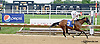 Lionhearted Lady winning at Delaware Park on 8/11/14