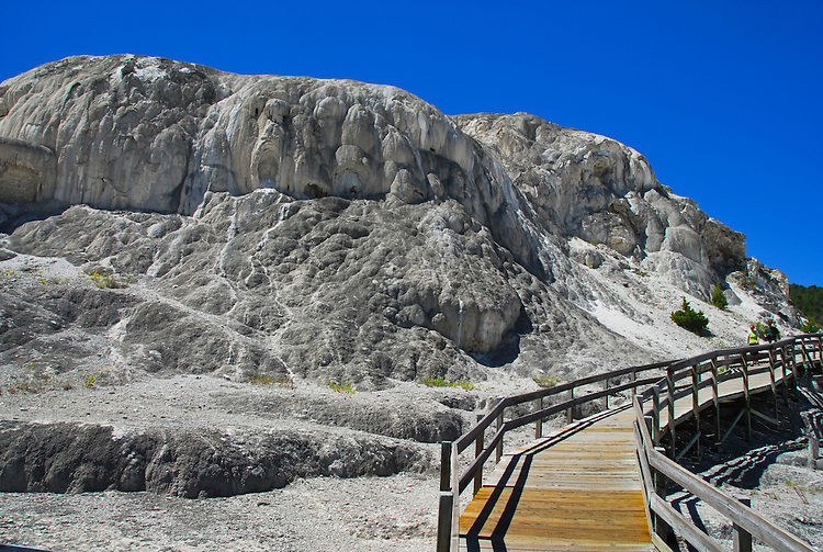 Mammoth Hot Springs Upper Terrace-Yellowstone National Park