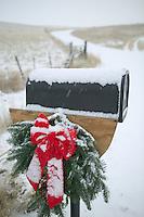 Wreath with snow and horses. Near Joseph, Oregon