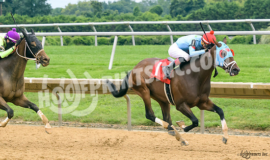 Bridget's Big Luvy winning at Delaware Park on 8/12/17