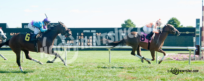 Grace of Greatness winning at Delaware Park on 9/23/13