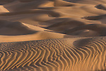 Sand dunes in the Thar Desert, Rajasthan, India