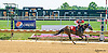 My Judith Marie winning at Delaware Park on 6/11/16