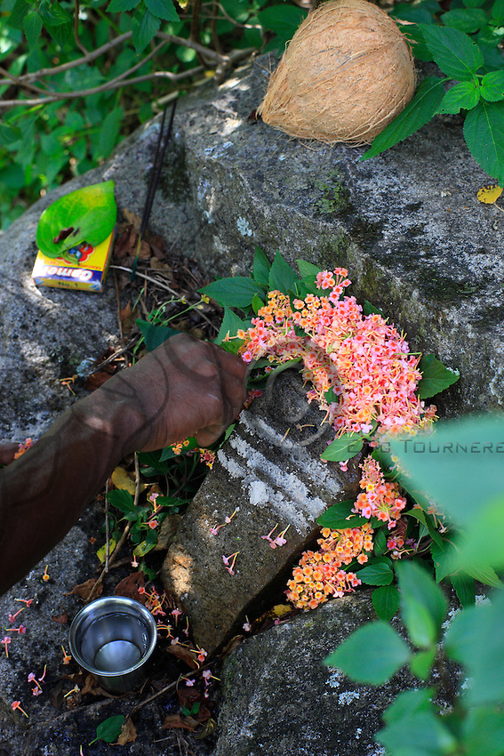Upon arrival at the jungle camp, the hunters accomplish a ritual to request protection from the ancestors. Life of the Irulas is very religious and every activity starts with rituals and ceremonies for deities or ancestors. Coconuts, flowers, bananas, incense are offered when a direct response or permission is requested.