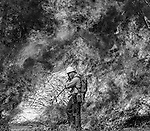 September 3, 1987 Pine Mountain Lake, California --Stanislaus Complex Fire -- Stanislaus National Forest  firefighter Rob Laeng moves down fire line while backfire is in progress. The Stanislaus Complex Fire consumed 28 structures and 145,980 acres.  One US Forest Service firefighter, David Ross Erickson, died from a tree-felling accident.