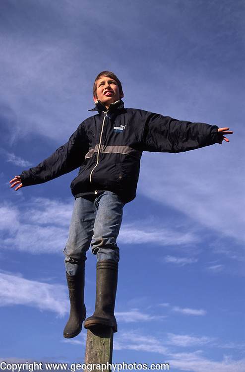 ARM4DD Child standing on fence post against blue cloud sky background