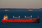 Cargo ships waiting in Puget Sound to off load containers sunrise