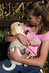12 year old girl looks at a yellow Labrador retriever puppy (AKC) in the fall.  Birchwood, WI