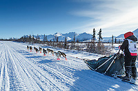Katie Deits team runs down the trail on the Denali Highway during the start day of the 2015 Junior Iditarod on Sunday March 1, 2015<br /> <br /> <br /> <br /> (C) Jeff Schultz/SchultzPhoto.com - ALL RIGHTS RESERVED<br />  DUPLICATION  PROHIBITED  WITHOUT  PERMISSION