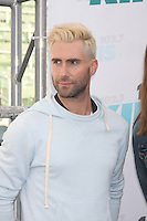 Adam Levine<br />