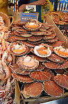 Coquille St Jaques shell fish laid out on market stall Paris.
