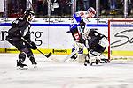 Nuernberg Ice Tigers - Schwenninger Wild Wings 17.11.2019