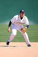February 20, 2009:  Shortstop Anthony Toth (16) of the University of Michigan during the Big East-Big Ten Challenge at Jack Russell Stadium in Clearwater, FL.  Photo by:  Mike Janes/Four Seam Images