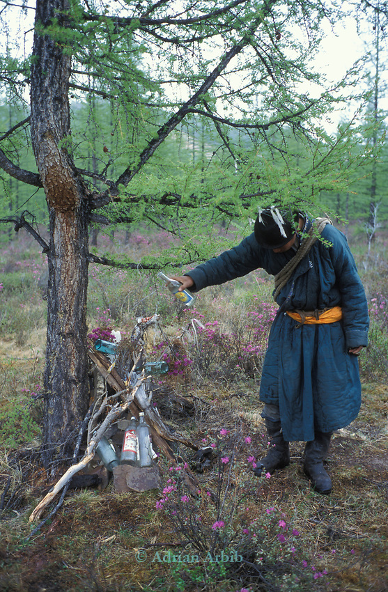 A  Mongolian  man pours vodka onto  an Ovoo ( a buddhist  pagan temple of worship)  in the Taijga forest.  Northern outer Mongolia Russian border.