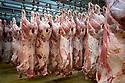 27/03/17 - RUNGIS - VAL DE MARNE - FRANCE - Marche d Interet National de Rungis. Pavillon des viandes, carcasses de veaux et de boeuf - Photo Jerome CHABANNE