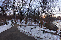 View of pathways in the Ramble in New York City's Central Park at sunrise in the winter.