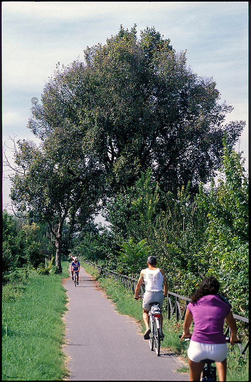 Binasco (Milano). Pista ciclabile nel Parco Agricolo Sud lungo il Naviglio Pavese --- Binasco (Milan). Bicycle path in the Rural Park South along the canal Naviglio Pavese