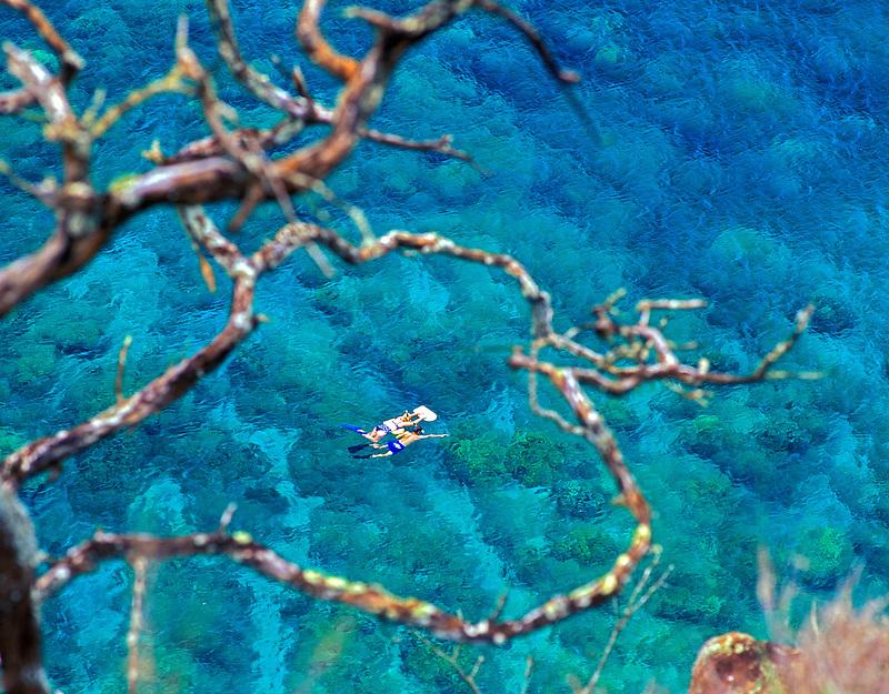 Snorkelers in Honolua Bay. Maui, Hawaii.