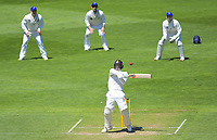 Wellington's Tom Blundell brings up his 50 during day two of the Plunket Shield cricket match between the Wellington Firebirds and Otago Volts at the Basin Reserve in Wellington, New Zealand on Tuesday, 22 October 2019. Photo: Dave Lintott / lintottphoto.co.nz