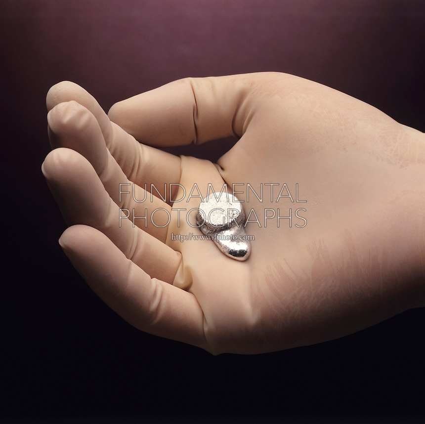 GALLIUM (Ga) MELTS IN HAND<br /> Soft, Blue-white Metal. At. No. 31,  At.Wt. 69.72. Boiling Point: 2,204 C - Melting Point: 29.78 C. Found throughout the crust in bauxite, germanite &amp; coal. Used in semiconductor production &amp; in making LEDs (light-emitting diodes) and GaAs laser diodes. Predicted by Mendeleev &amp; named eka-aluminum.