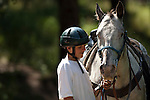 Boy with horse at Cheley Camp, summer, Estes Park, Colorado, not released