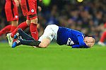 Steven Naismith of Everton goes down holding his head - Everton vs. Leicester City - Barclay's Premier League - Goodison Park - Liverpool - 22/02/2015 Pic Philip Oldham/Sportimage