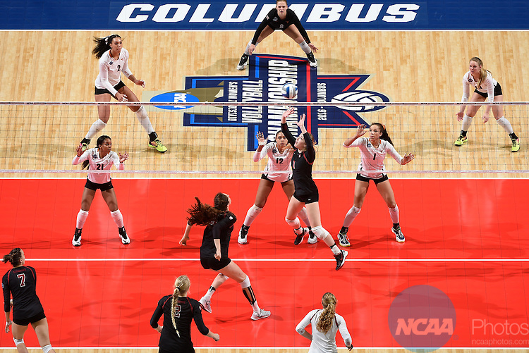 COLUMBUS, OH - DECEMBER 17:  Jenna Gray (1) of Stanford University sets the ball against the University of Texas during the Division I Women's Volleyball Championship held at Nationwide Arena on December 17, 2016 in Columbus, Ohio.  Stanford defeated Texas 3-1 to win the national title. (Photo by Jamie Schwaberow/NCAA Photos via Getty Images)