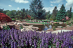 Kubota Gardens, Japanese Garden, Seattle, Rainier Beach Neighborhood, Washington State, Pacific Northwest, school outing,.