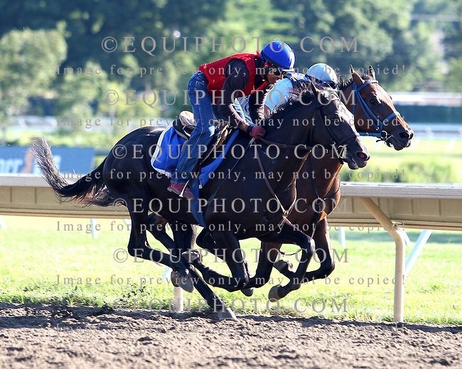 Morning Workouts at Monmouth Park in Oceanport, N.J.  Photo By Bill Denver/EQUI-PHOTO